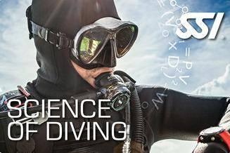 Curso De Science Of Diving